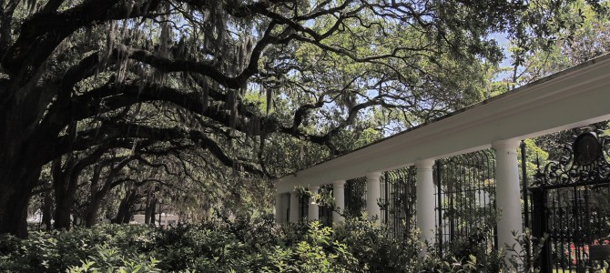 See Historic Savannah in a Day