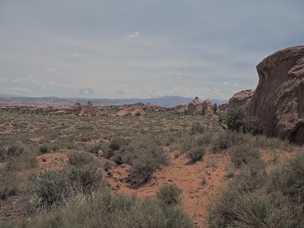 Along a Primitive Trail in Devil's Garden