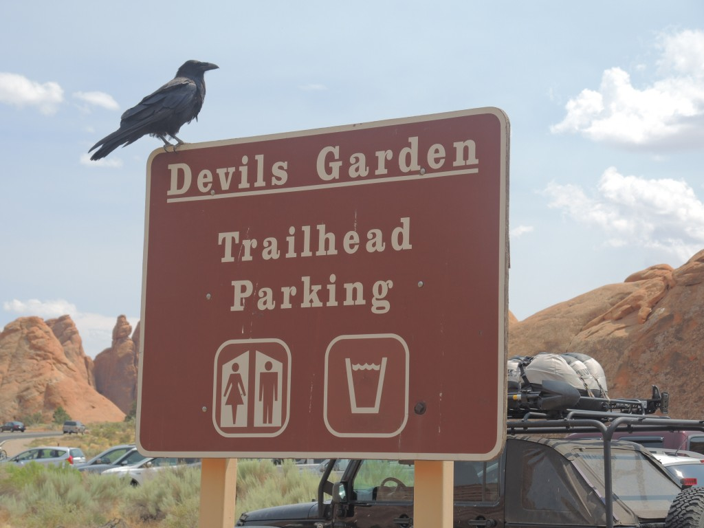 The Perfect Spot for a Menacing Bird to Perch